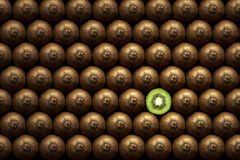 Sliced kiwi between group Royalty Free Stock Image