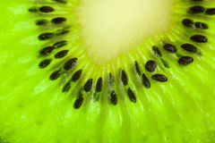 Sliced kiwi illustrated in the whole frame Stock Images