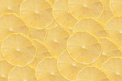 Sliced lemon as background Stock Photography