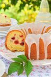 Sliced Lemon and Caraway Seed Bundt Cake with Raspberries Stock Photography