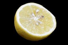 Sliced Lemon Fruit Stock Photo