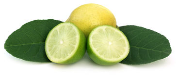 Sliced Lemon with green leaves Stock Photography