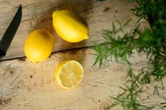 Sliced lemon. S on rustic wood background with fresh rosemary herb on vintage cutting board with knife beautiful food ingredient and herb background Royalty Free Stock Photo