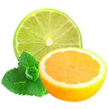 sliced lemon and lime with mint isolated on a white background Stock Images