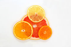 Sliced lemon, mandarin, grapefruit and orange on a white backgro Stock Photos