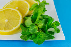 Sliced lemon and  mint Stock Photo