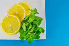 Sliced lemon and  mint Stock Images