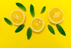 Sliced lemon and mint leaves on a bright yellow background. Background for the design of banners, websites. Sliced lemon and mint leaves on a bright yellow stock photos