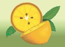 Sliced lemon piece Royalty Free Stock Images