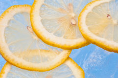 Sliced lemons. On ice cubes Royalty Free Stock Images