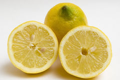 Sliced Lemons Stock Image