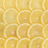 Sliced lemons Stock Photos