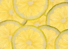 Sliced lemons background. Background of overlapping sliced lemon cross sections Stock Photography