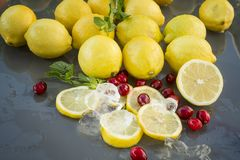 Sliced Lemons & Cranberrys. On on a outdoor glass table with reflexion.  c Stock Images
