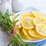 Sliced lemons with rosemary on a plate Royalty Free Stock Photos