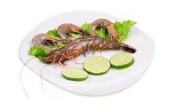 Sliced lemons and shrimps. Royalty Free Stock Image