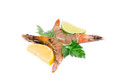 Sliced lemons and shrimps Stock Images