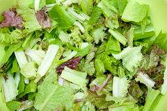 Sliced lettuce Stock Images