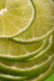 Sliced lime Stock Image