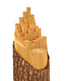 Sliced Lumber from the log. 3d illustration Stock Photos