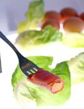 Sliced meat. Delicious fresh sliced meat on salad Royalty Free Stock Photo