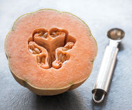 Sliced melon fruit Stock Photography
