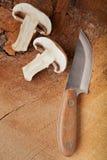 Sliced mushroom Stock Image