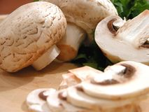 Sliced mushrooms Royalty Free Stock Image