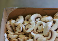 Sliced mushrooms in a cardboard container Stock Image