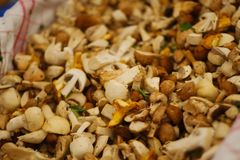 Sliced mushrooms at the market Stock Photo