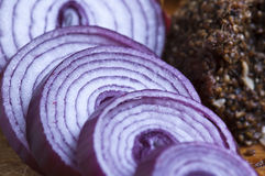 Sliced onion Royalty Free Stock Photos