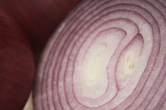 Sliced Onion Stock Photography