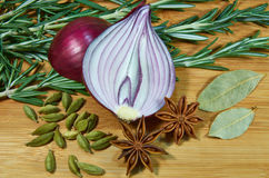 Onion with herbs 2 Royalty Free Stock Photography