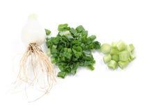 Sliced onion Stock Photography