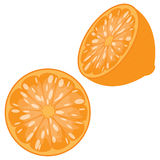 Sliced Orange. Orange sliced in half, front and 3/4 view, isolated on a white background Stock Image
