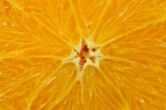 Sliced Orange Royalty Free Stock Photos