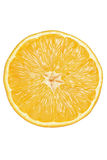 Sliced Orange Royalty Free Stock Photo