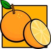 Sliced orange fruit. Illustration of a sliced orange fruit Royalty Free Stock Photo