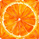 Sliced orange or grapefruit Royalty Free Stock Images