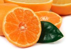 Sliced orange isolated Stock Images