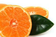 Sliced orange macro Stock Image