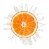Sliced orange splash with milk isolated. On white background Stock Photography