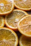 Sliced orange Stock Image