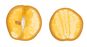 Sliced Oranges Royalty Free Stock Photos
