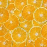 Sliced oranges pattern Stock Image