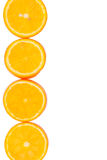 Sliced oranges with a place for text Stock Images
