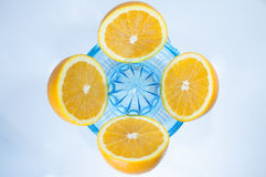 Sliced oranges on a squeezer. Four half-sliced oranges put simmetrically on a blue transparent plastic squeezer, on a light background Stock Photos