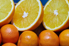 Sliced €oranges and tangerines Royalty Free Stock Photos