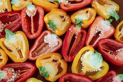 Sliced organic paprika pepper yellow and Red royalty free stock photography