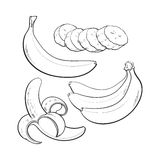 Sliced, peeled, singl and bunch of three ripe banana Stock Images
